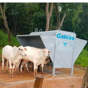 CAIXA GALVÃO